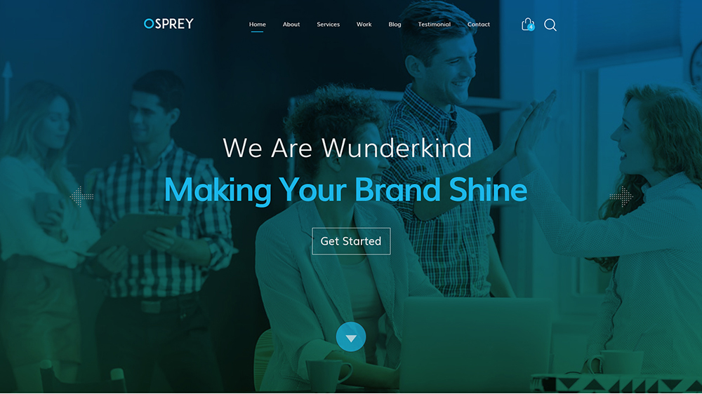 Download Osprey Business Template