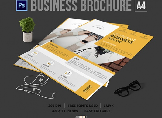 Download   Corporate Company Flyer Psd Template